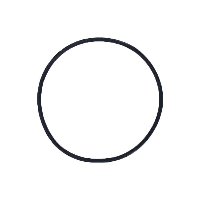 Pump Lid O-ring